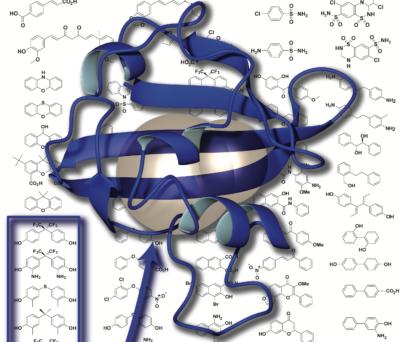 2002 Amezcua cover